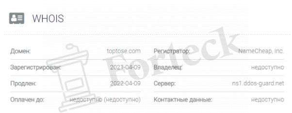 обзор официального сайта TopTose