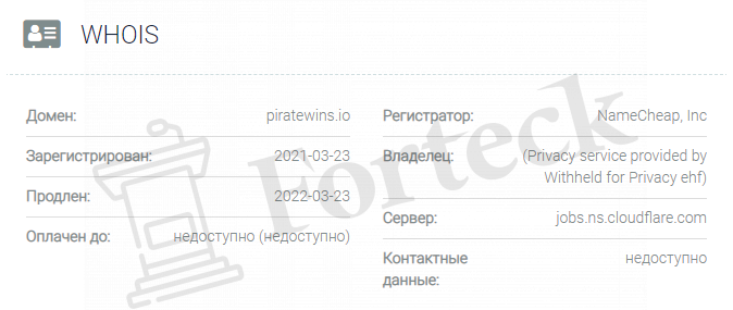 обзор официального сайта Piratewins