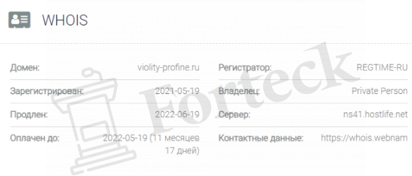 обзор официального сайта VIOLITY-PROFINE