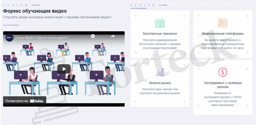 предложения EkolFX company