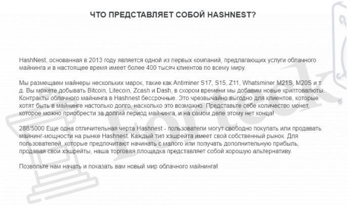 о HASHNEST
