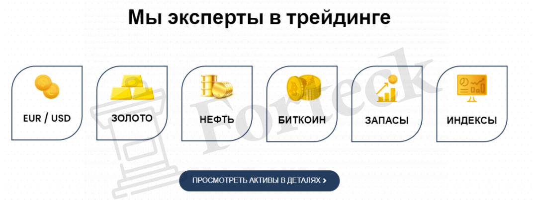 активы Platinum Hitech